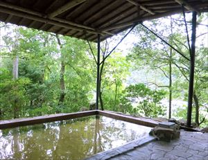 東京日帰り温泉探索 | 東京の日帰り出来る近くの温泉や近くの ...